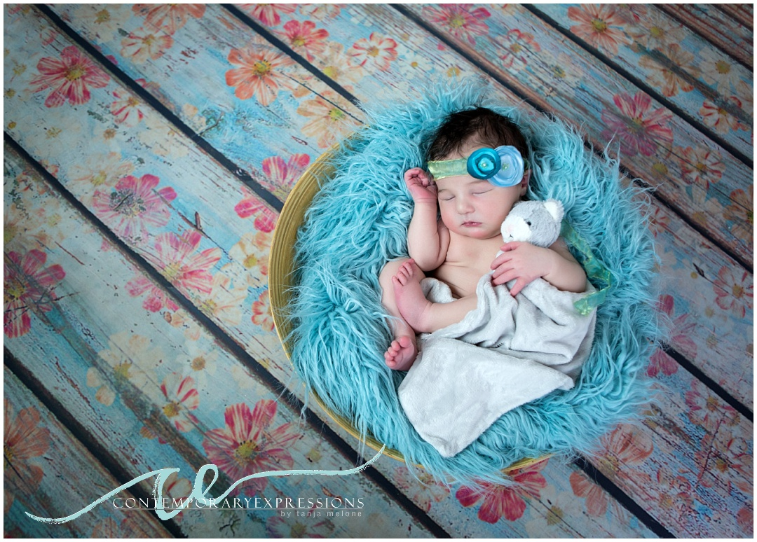 denver-newborn-photos