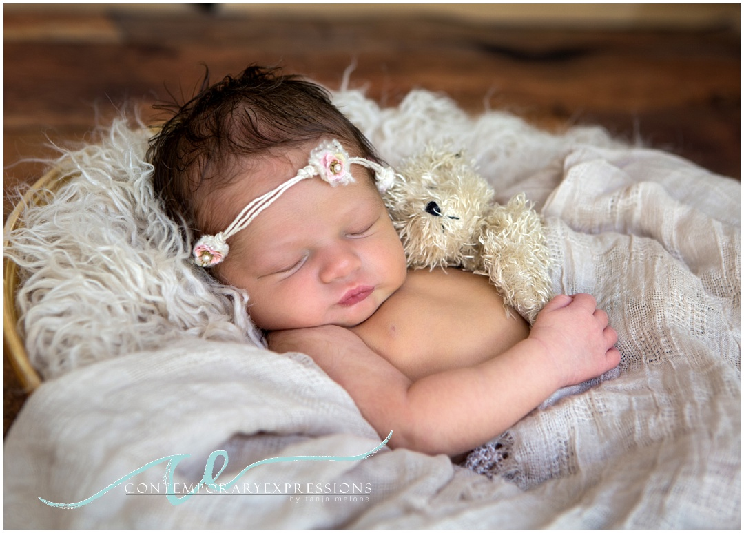 denver newborn photographer_0536.jpg